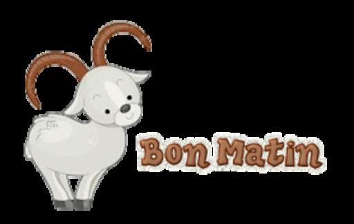 Bon Matin - BighornSheep