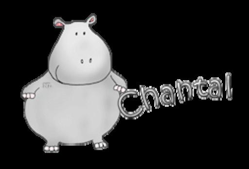 Chantal - CuteHippo2018
