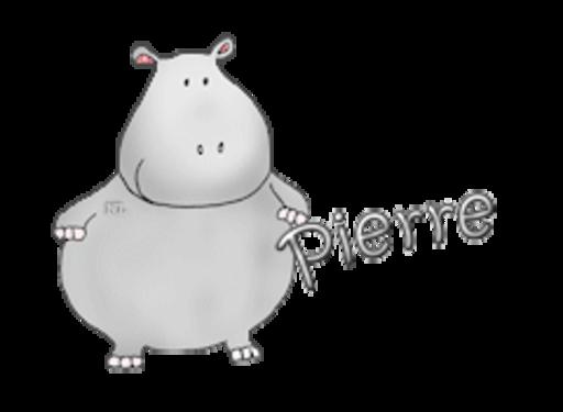 Pierre - CuteHippo2018