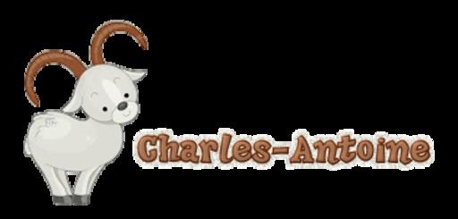 Charles-Antoine - BighornSheep