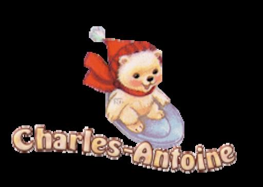 Charles-Antoine - WinterSlides