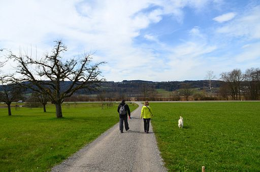 Hike around Greifensee Lake