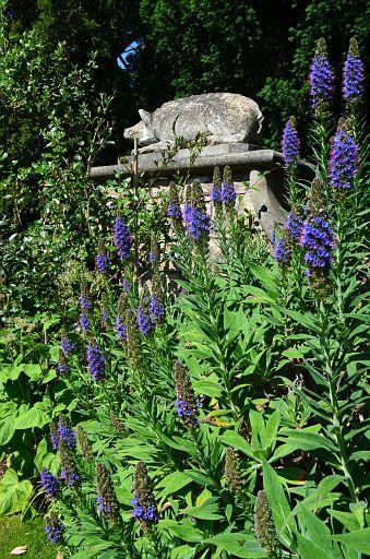 Mount Stewart Gardens