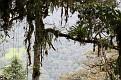 200-las deszczowy img 6051
