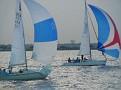 Dallas Race Week Race6 7-23-10 250.jpg
