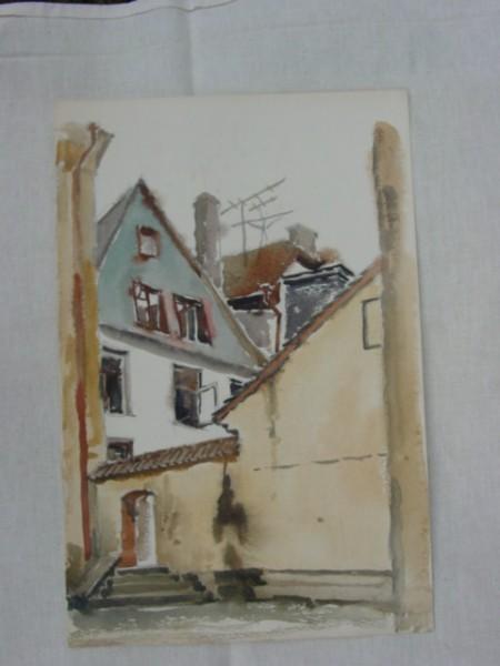 Zeniny Akvareli 001