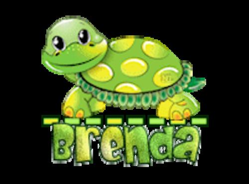 Brenda - CuteTurtle