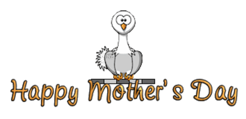 Happy Mother's Day - OstrichWithBlinkie