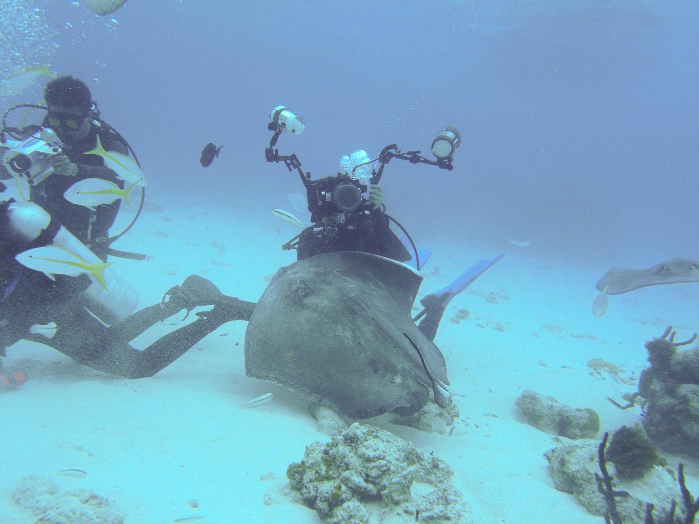 Grand_Cayman-111.jpg