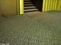 Upper Deck aft Stairs Carpet