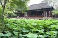 046-suzhou-ogrod umiarkowanej polityki-img 5000