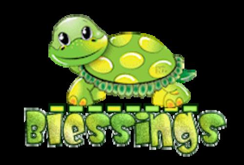 Blessings - CuteTurtle