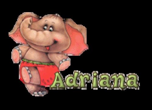 Adriana - CuteElephant
