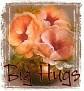 1Big Hugs-peachfloral