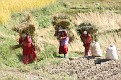 152-dolina kathmandu pola-img 6016