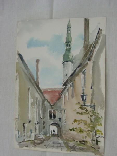 Zeniny Akvareli 005
