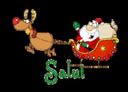 Salut - SantaSleigh