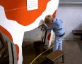 3690 Young boy practicing hand milking a cow