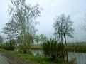 Regen am Overijsselkanaal