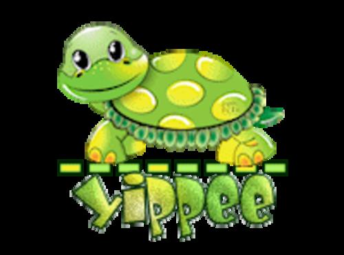 Yippee - CuteTurtle