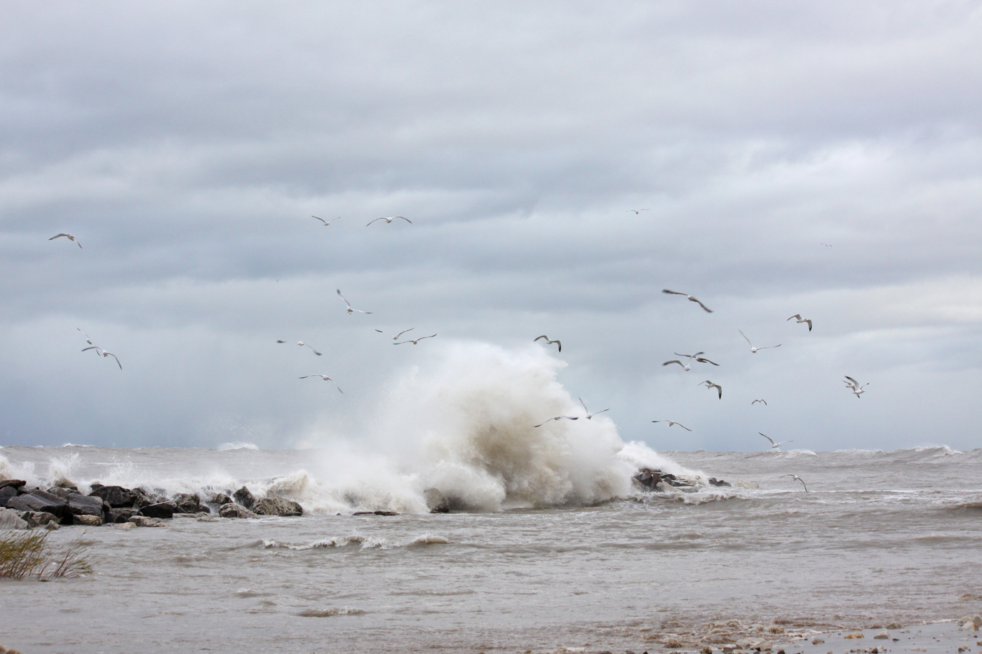 High Winds #14