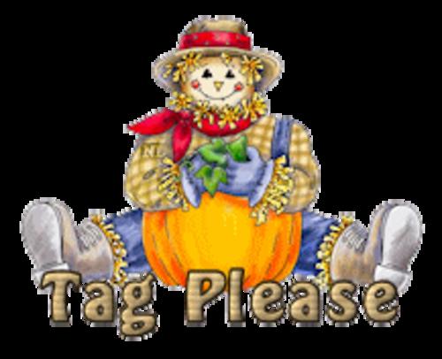 Tag Please - AutumnScarecrowSitting
