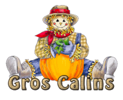 Gros Calins - AutumnScarecrowSitting