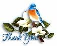 bluebird-thankyou