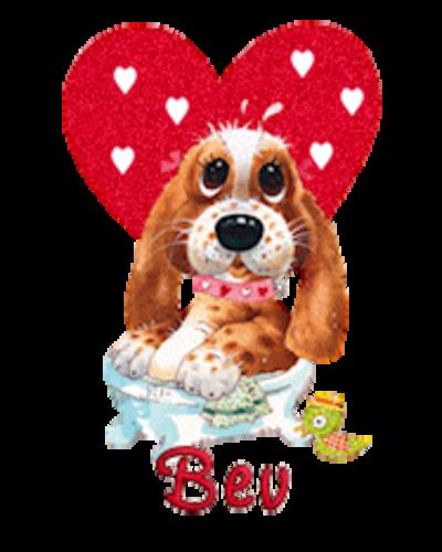 Bev - ValentinePup2016