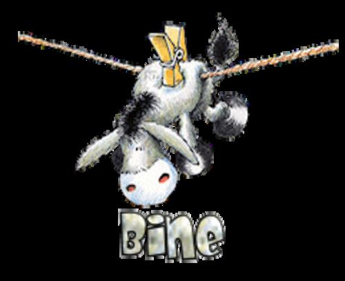 Bine - DunkeyOnline