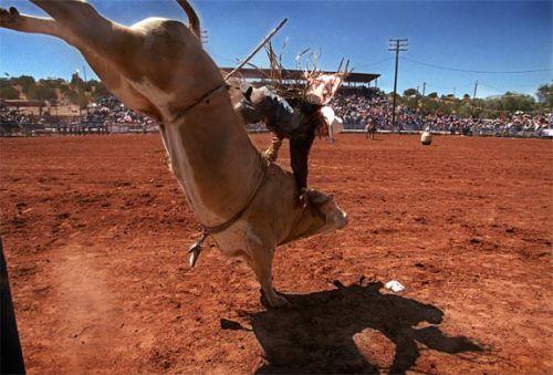 Navajo Rodeo