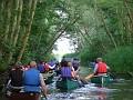 Canoe Trail - N Walsham & Dilham canal 001